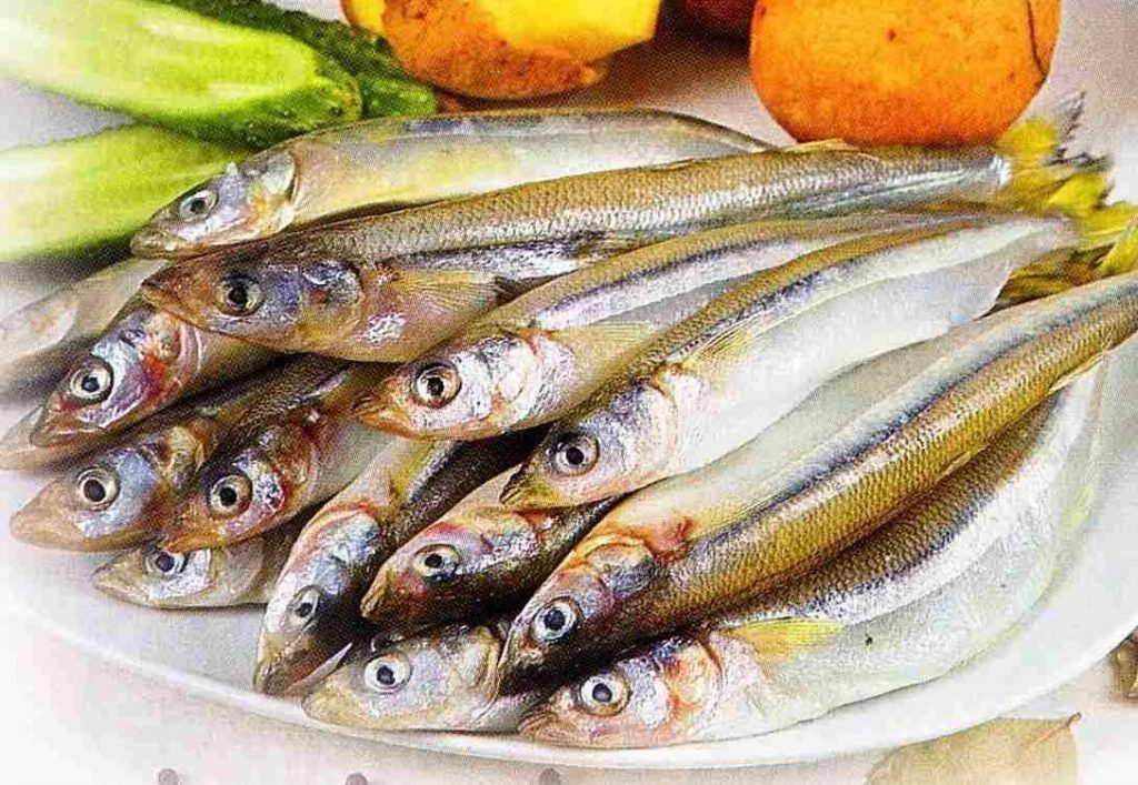 Что такое рыбная корюшка и где ее купить с доставкой в СПб